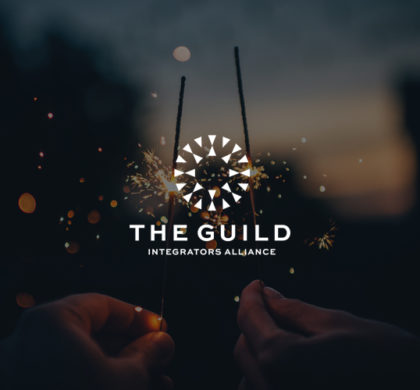 Introducing: The Guild